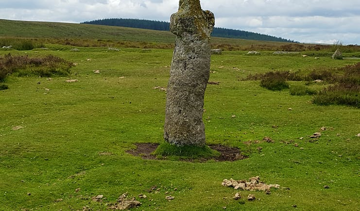 Dartmoor mediaeval cross on moor