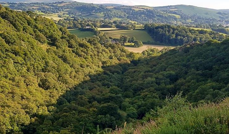 Dartmoor deep wooded river valley