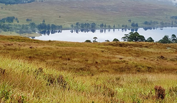 West highland way loch of water with trees reflected