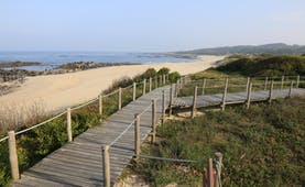 Wooden walkway over sand dunes