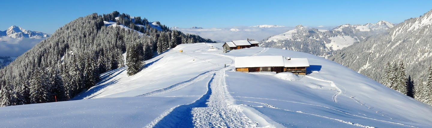 Snow field and track with mountain hut and trees Wispile Gstaad