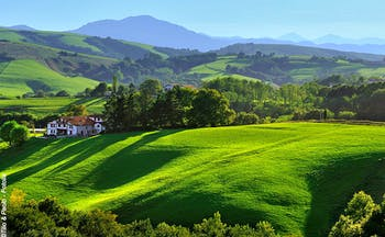 Green rolling fields with mountains in the distance in the French Basque country