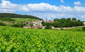 burgundy village of volnay with green vineyard